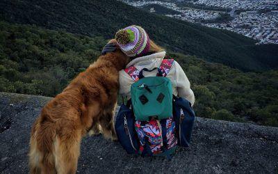 Cómo cuidar a tu perro en tus aventuras. 6 consejos